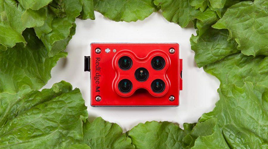 Video Matrice 210 para agricultura con cámara RGB Zenmuse X5S multiespectral RedEdge-M y Pix4DFields